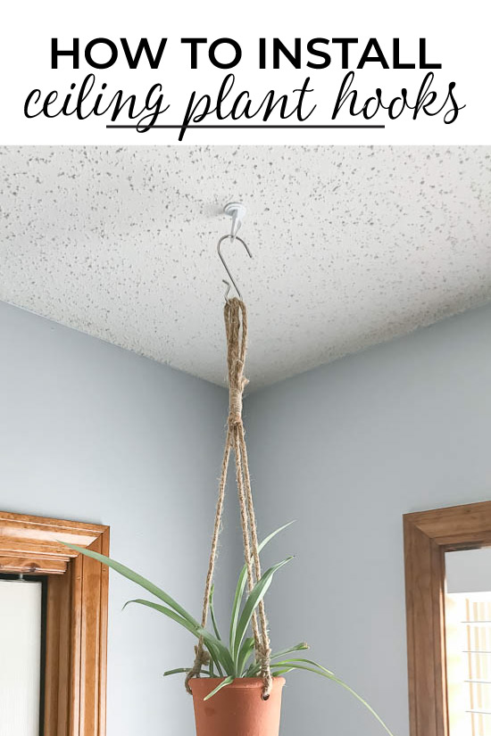 How to Install Ceiling Plant Hooks