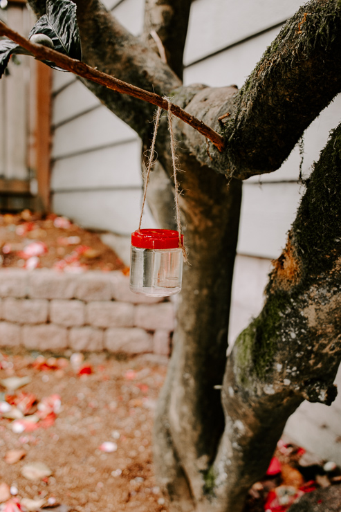 Hang your feeder from a tree, where you see hummingbirds visit