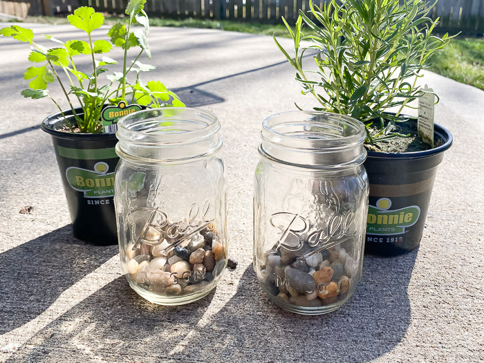 Planting herbs in Mason Jars with rocks as drainage