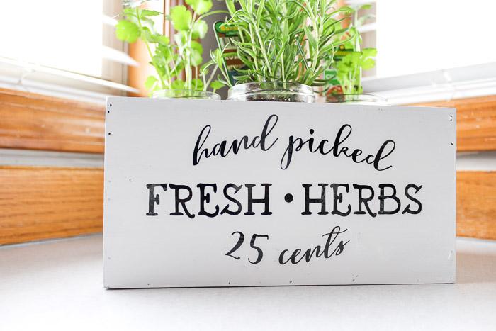 Hand picked Fresh Herbs