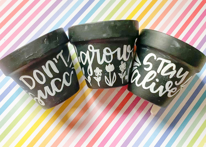 hand lettered pots finished