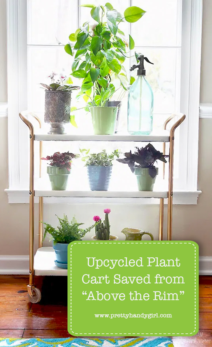 """Upcycled Plant Cart Saved from """"Above the Rim"""" 