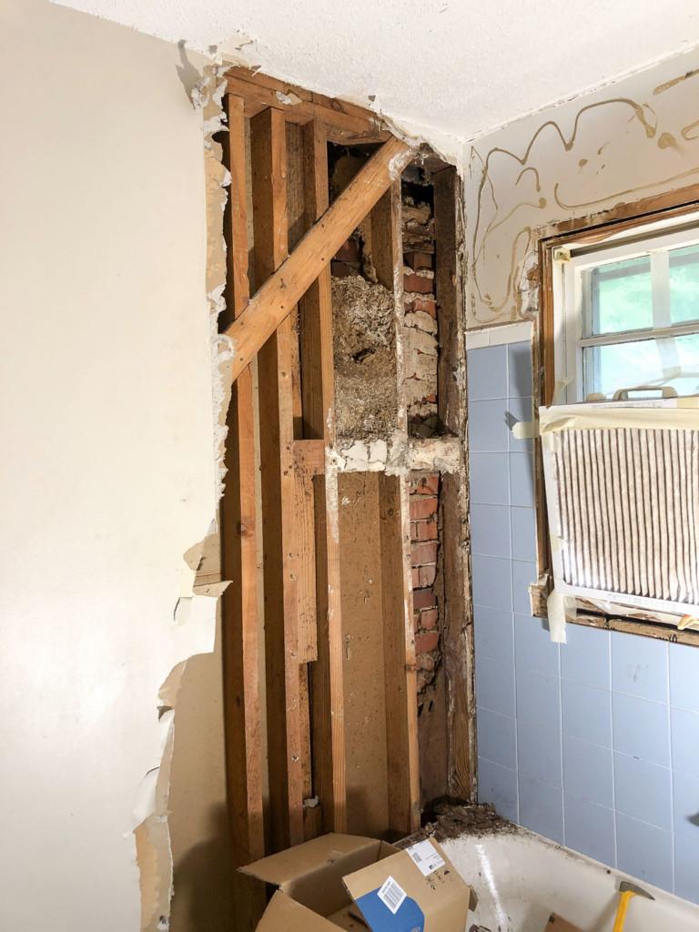 nest in wall cavity